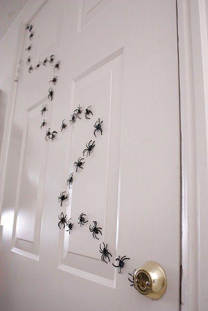 porta aranha
